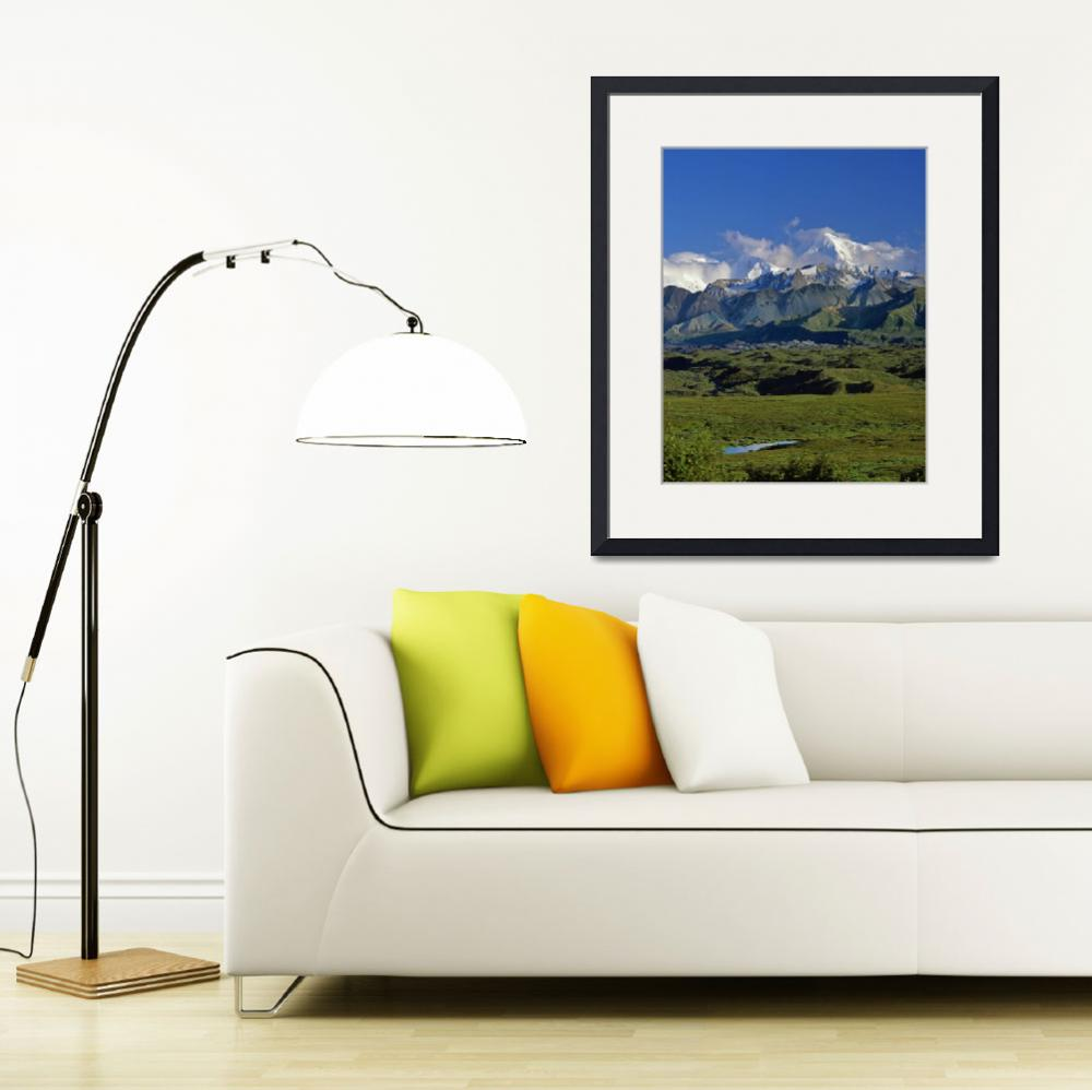 """""""Wetlands beneath Mount McKinley&quot  by Panoramic_Images"""