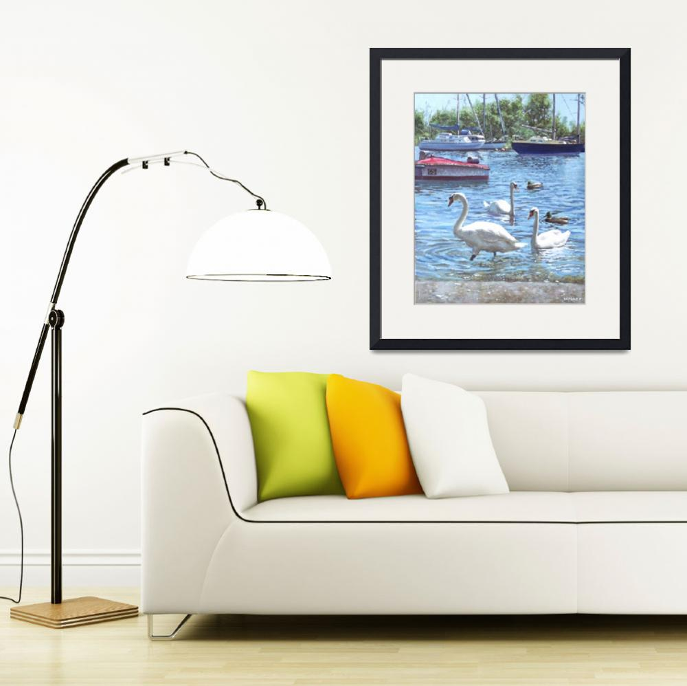 """""""christchurch harbour swans and boats&quot  (2011) by martindavey"""