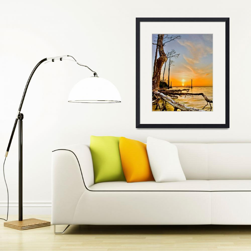 """Orange Lake Sunset Reflection Tree Roots Art Print""  (2014) by eszra"