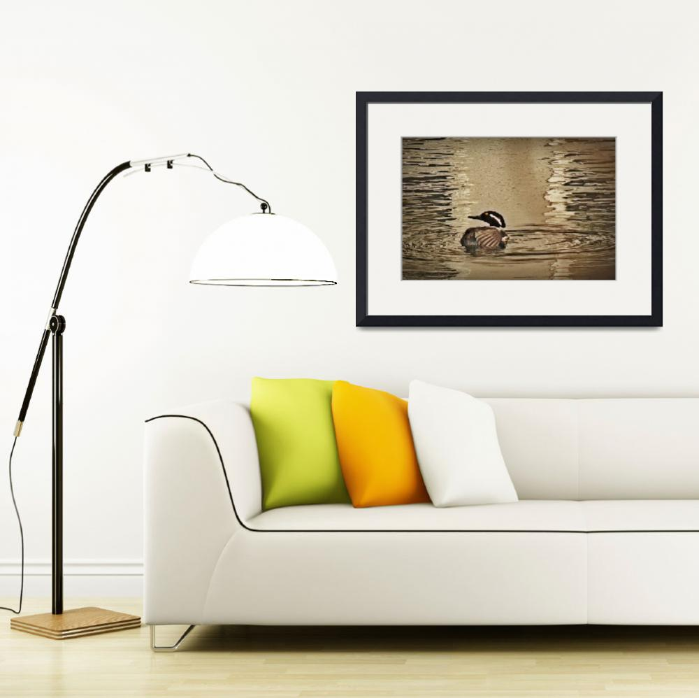 """Hooded Merganser March 2014&quot  (2014) by bavosiphotoart"