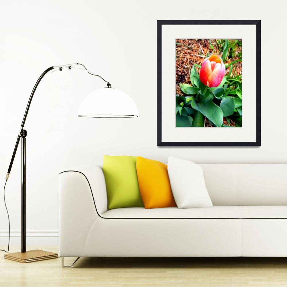 """""""tulip expressive&quot  by lizmix"""