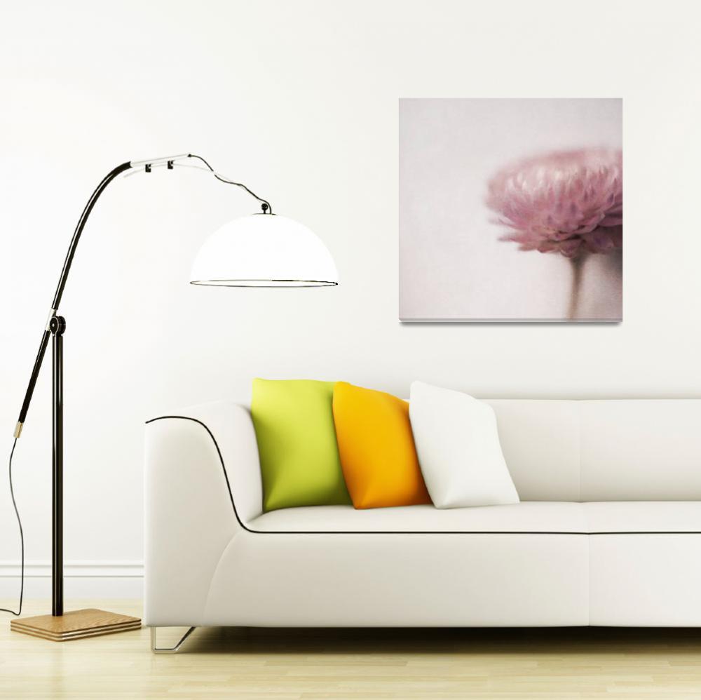 """Pastel Cornflower 3""  (2018) by Piri"