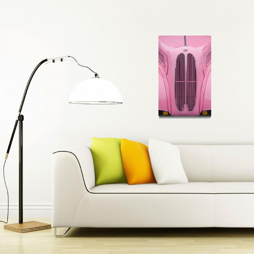 """""""intopink""""  (2007) by ShutterQuest"""