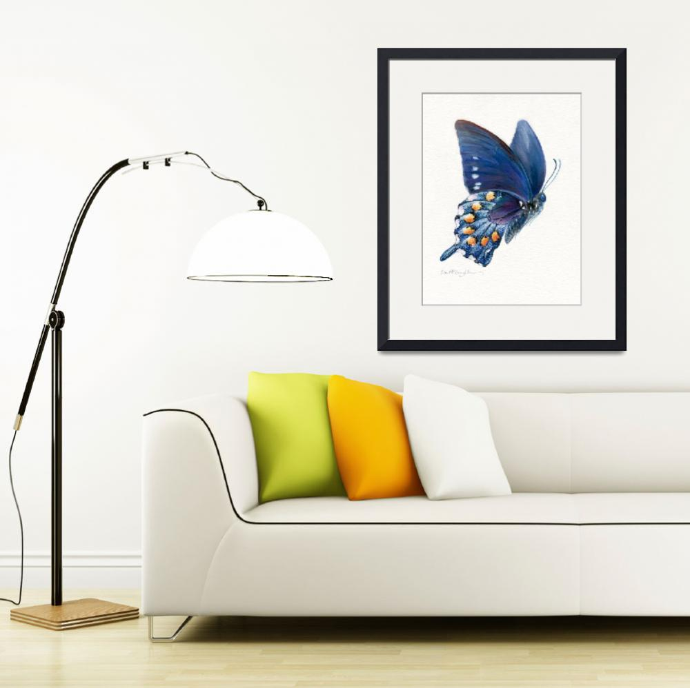 """Pipevine swallowtail butterfly in flight""  (2008) by LisaMclaughlin"