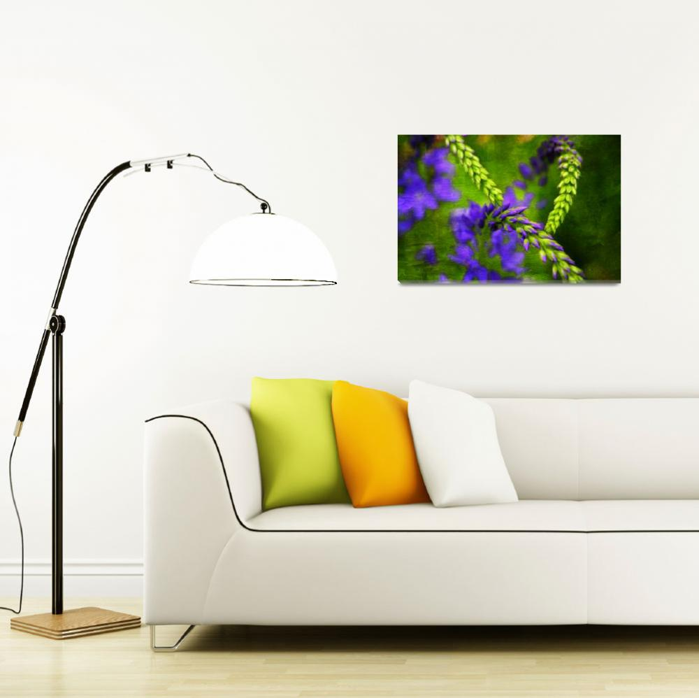 """Graphic Flora""  (2011) by DragosDumitrascu"