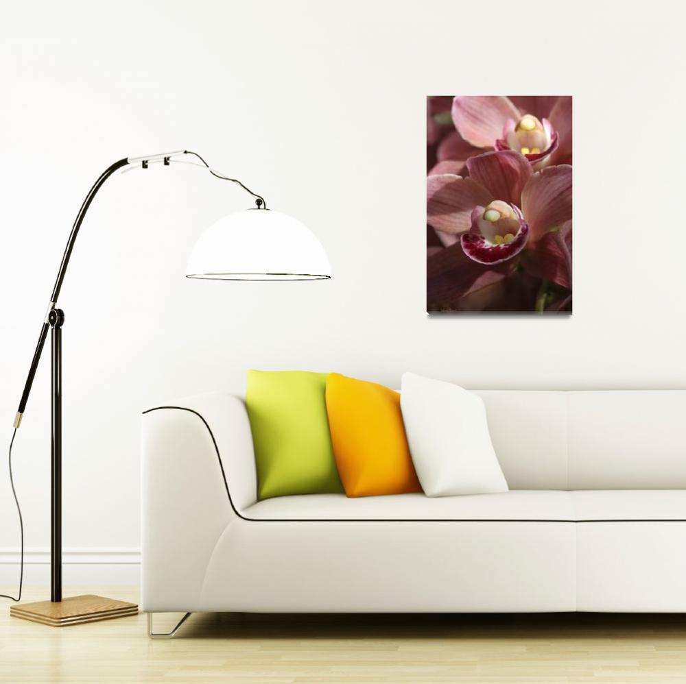 """""""Florida Pink Orchids""""  (2010) by DBenoit"""