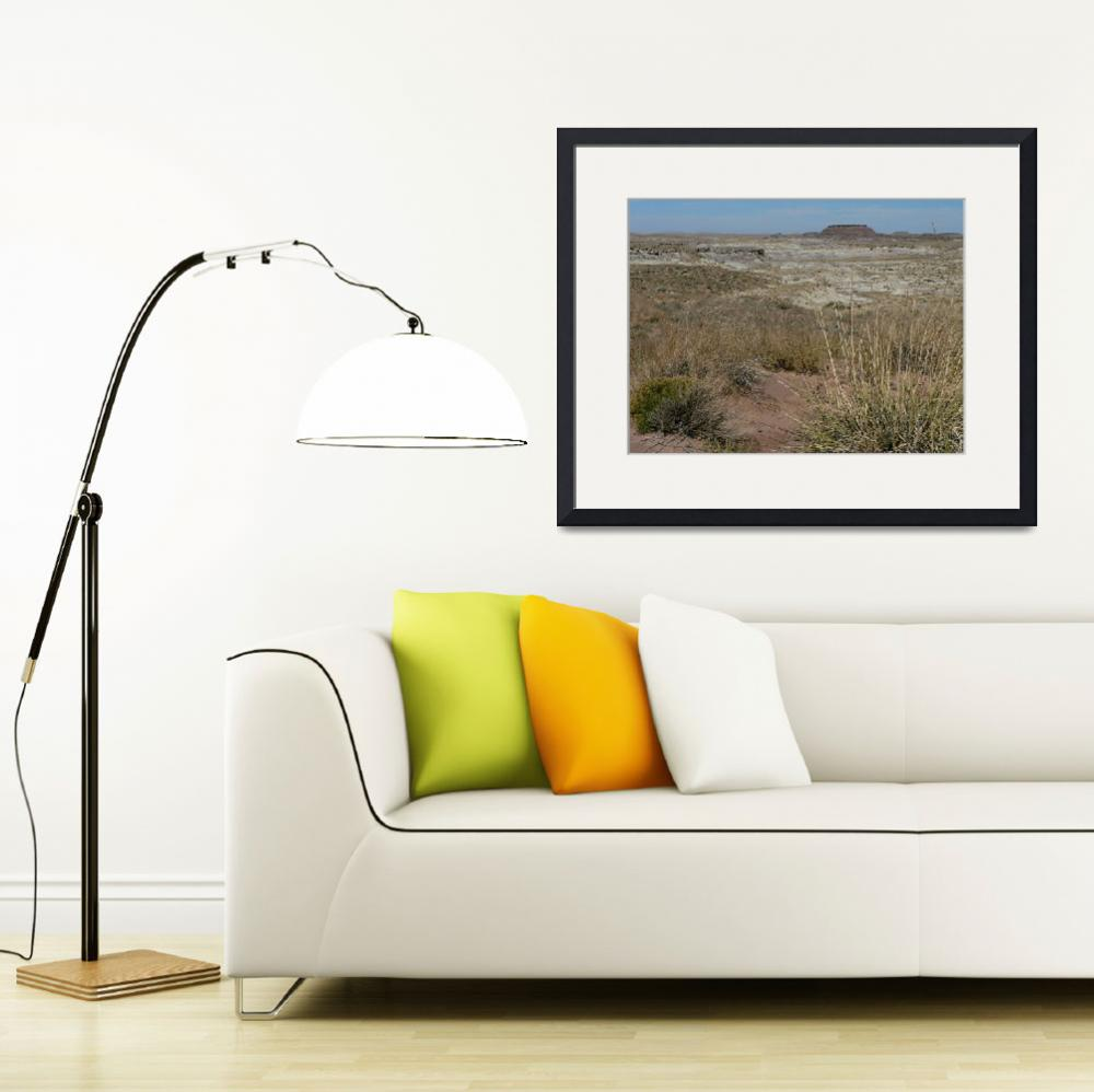 """""""Painted Desert P1120927&quot  (2012) by rayjacque"""