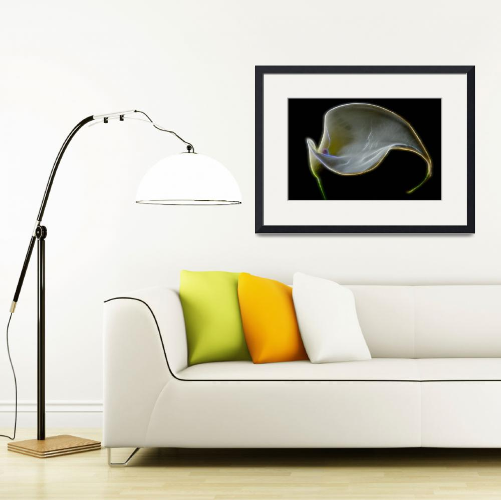 """Calla Lily Abstract""  (2014) by boppintheblues"