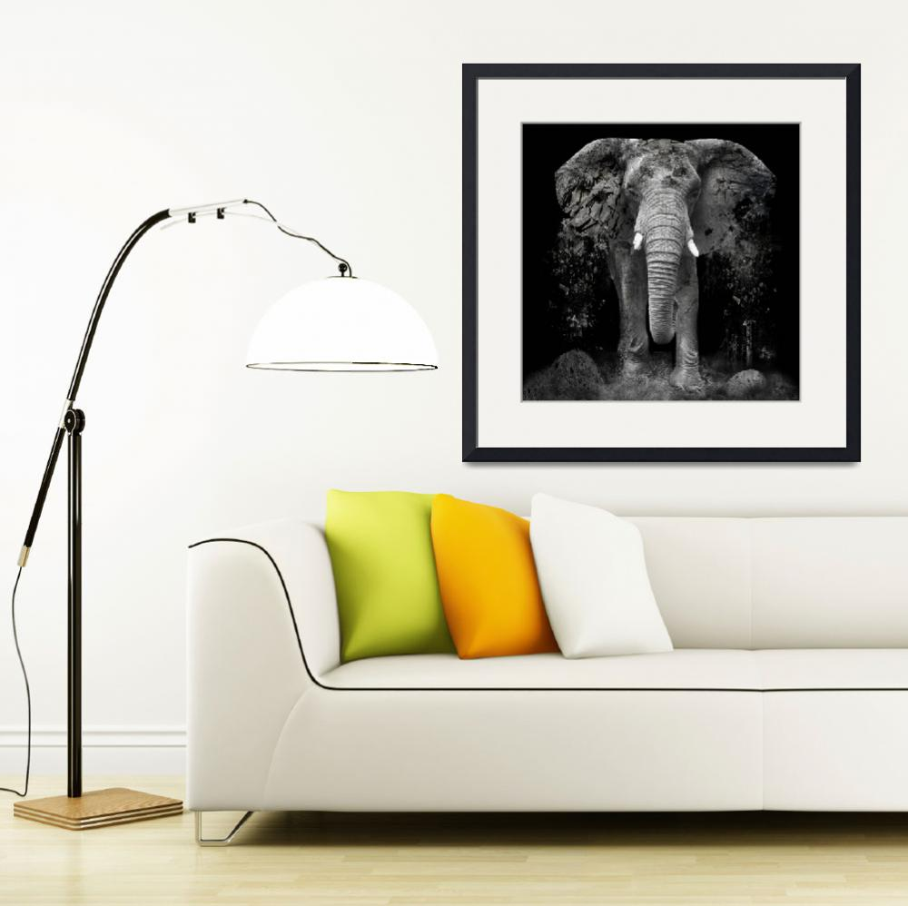 """""""The Disappearance of the Elephant&quot  (2014) by brede"""