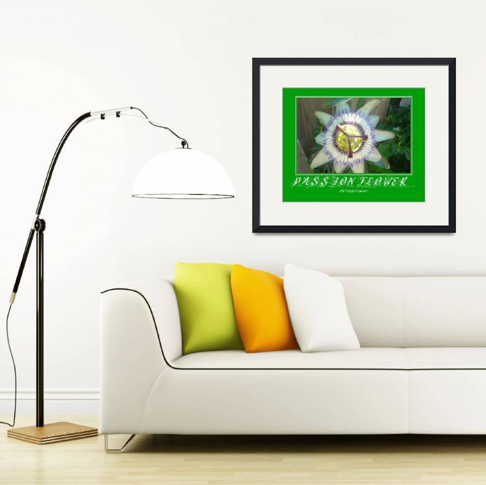 """Passion Flower Poster&quot  by rgtmum"