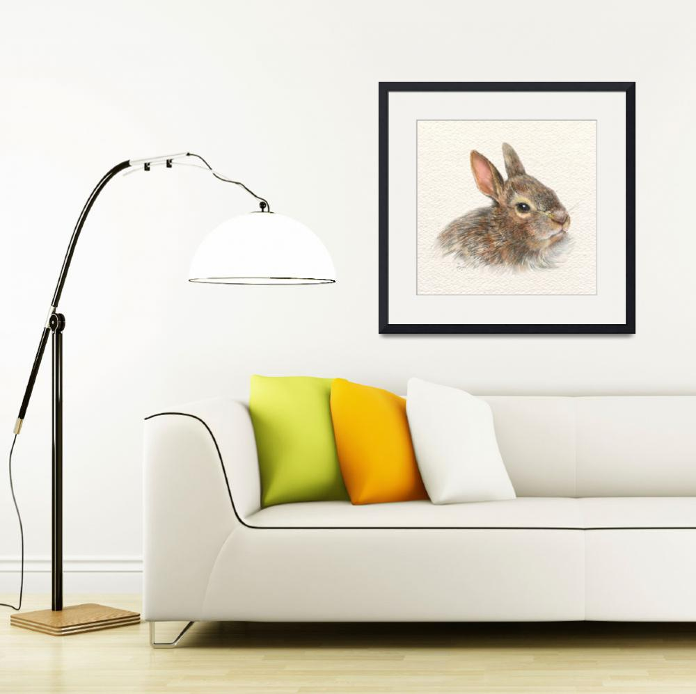 """""""baby bunny&quot  (2011) by LisaMclaughlin"""