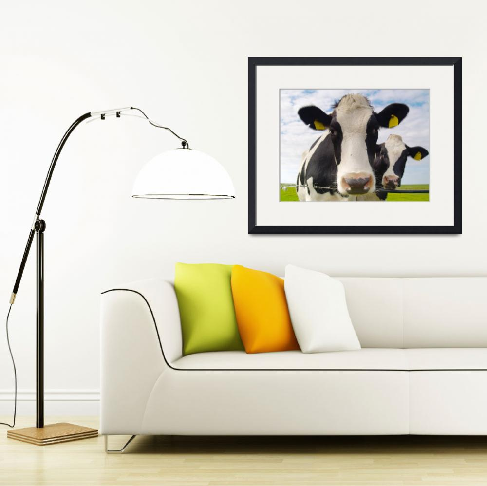 """""""two cows&quot  (2009) by derausdo"""