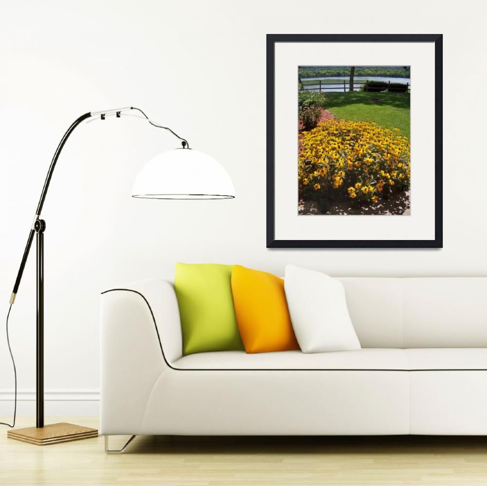 """""""Black-Eyed Susan&quot  (2008) by photosbycharlie"""