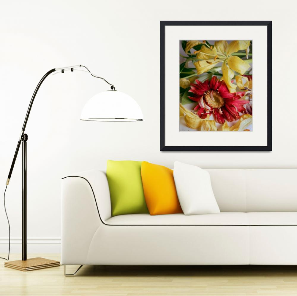 """""""Wilted Daisy andDaylilies&quot  (1983) by RussMartinPhotography"""