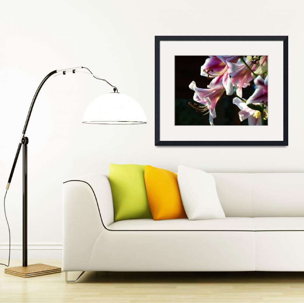 """Lily Flower art prints Pink Lilies Summer artwork&quot  (2010) by BasleeTroutman"