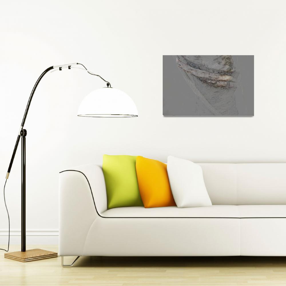 """Charcoal drawing organic nature tree minimalism ab""  (2014) by HeidiVaught"