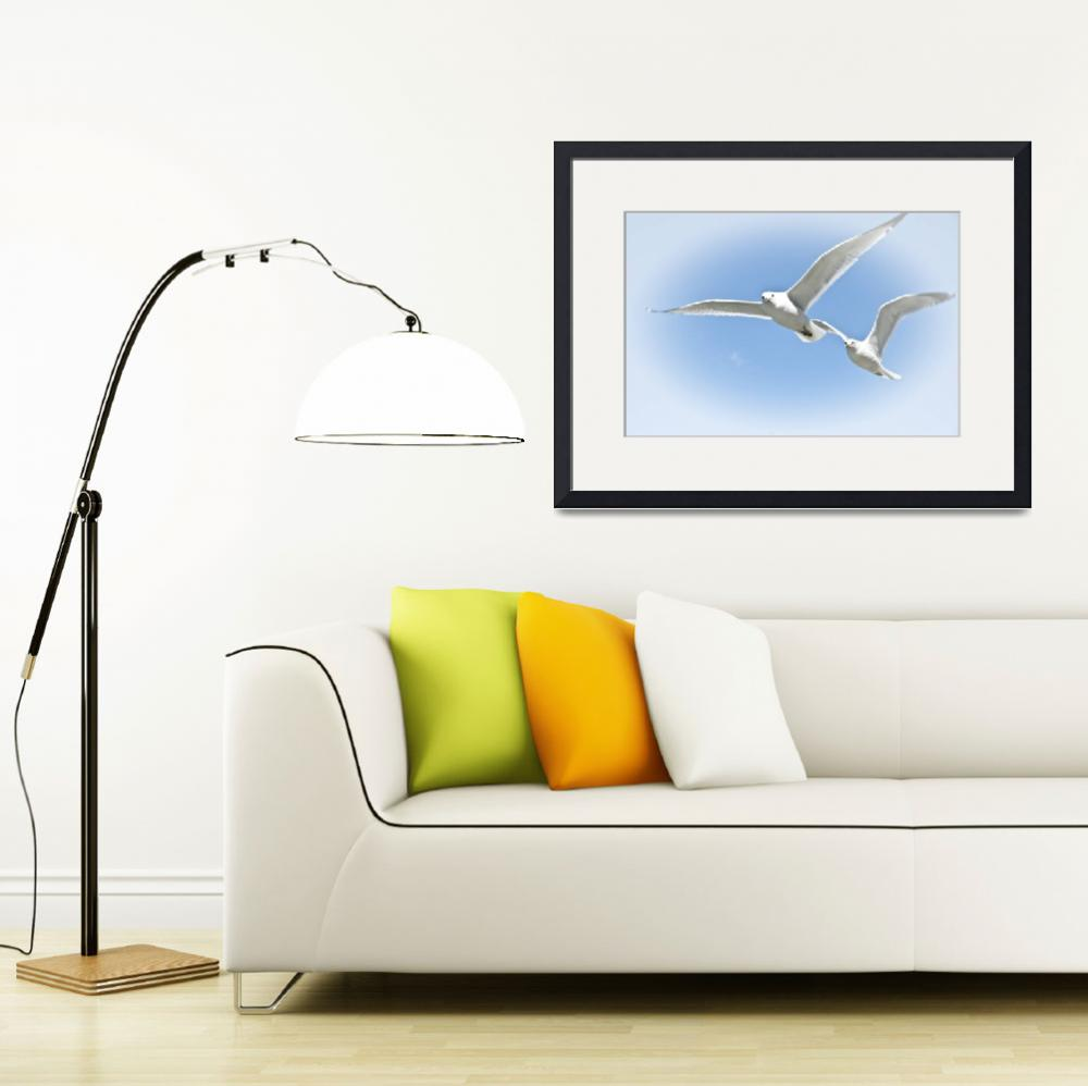 """""""Two Sea Gulls Flying&quot  (2009) by darknesstolight"""