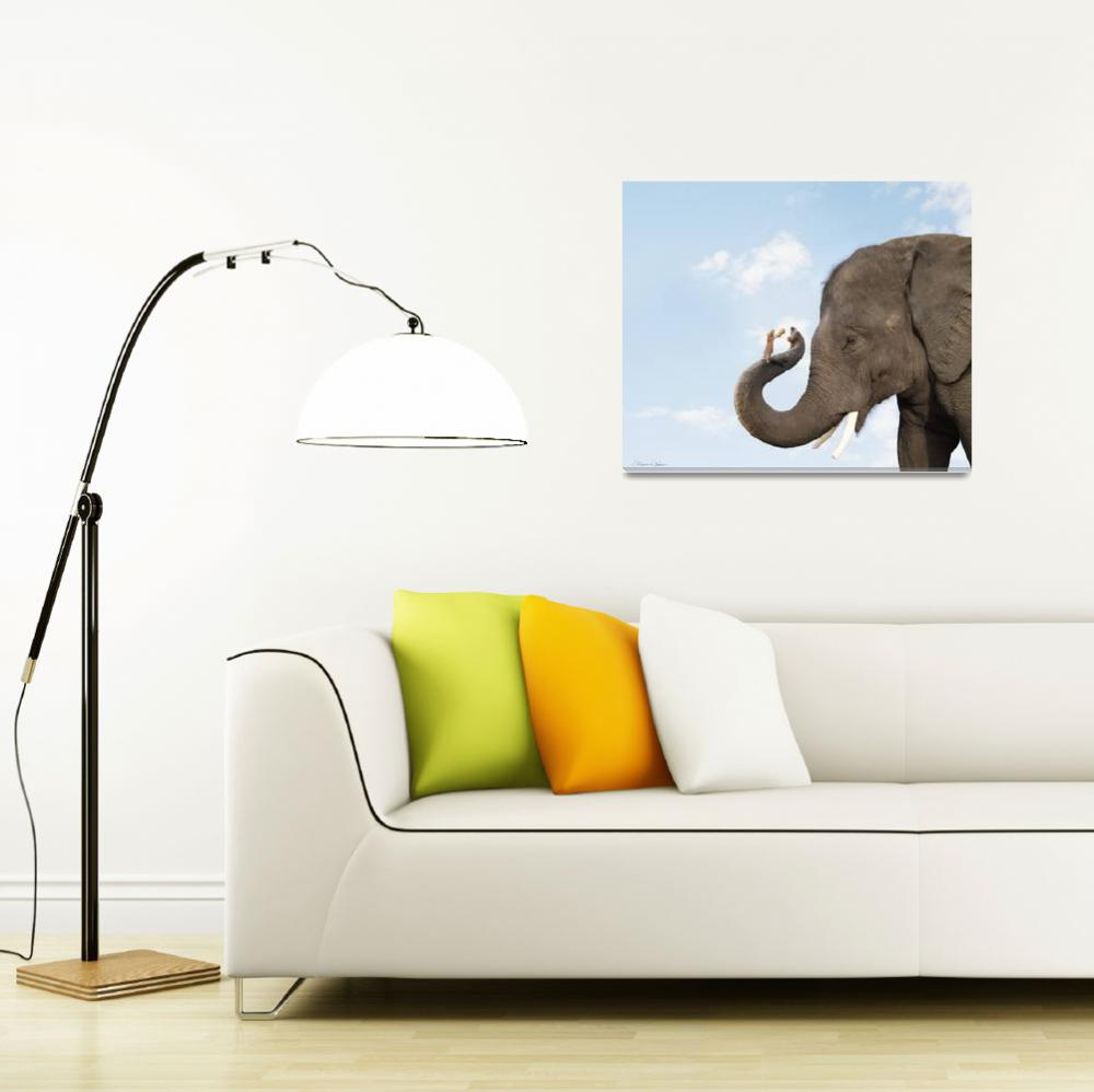 """Cute photo of elephant and mouse friends sharing a&quot  (2009) by StephanieDRoeser"