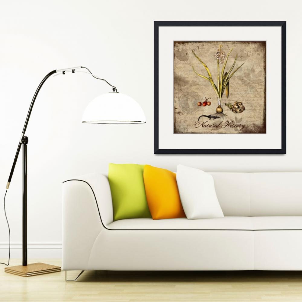"""""""Natural History&quot  by artlicensing"""