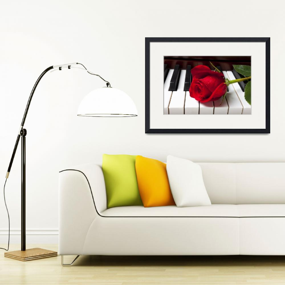 """Red rose on piano keys&quot  (2012) by photogarry"