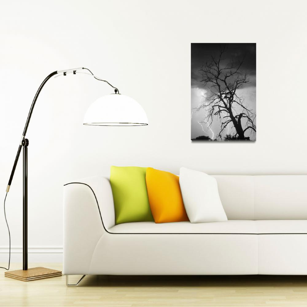 """Lightning Tree Silhouette Portrait BW&quot  (2011) by lightningman"