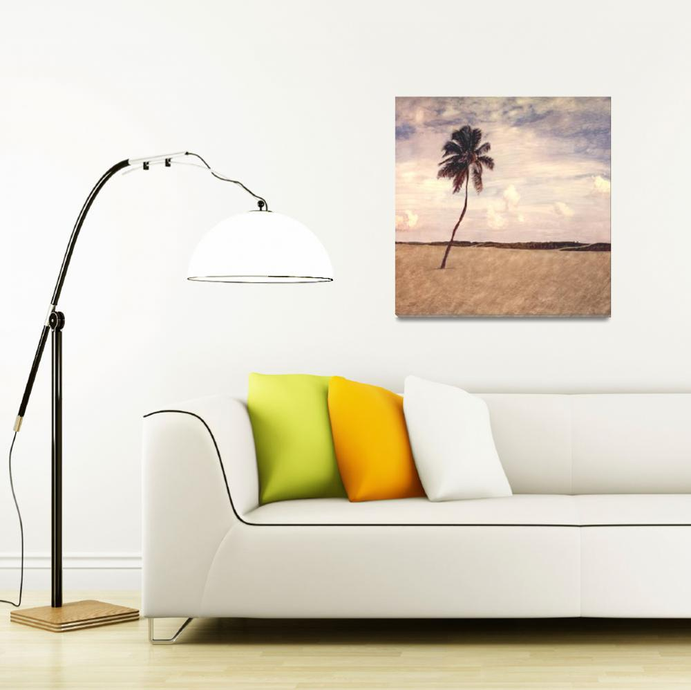 """Lone Palm- Miami Beach,FL""  (1998) by joegemignani"
