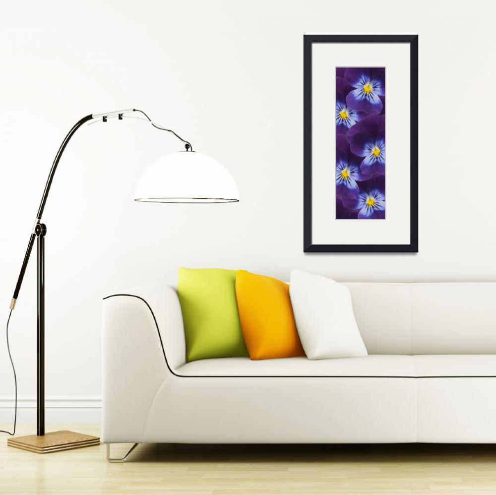 """""""Wild Pansies&quot  (2014) by CoraNiele"""