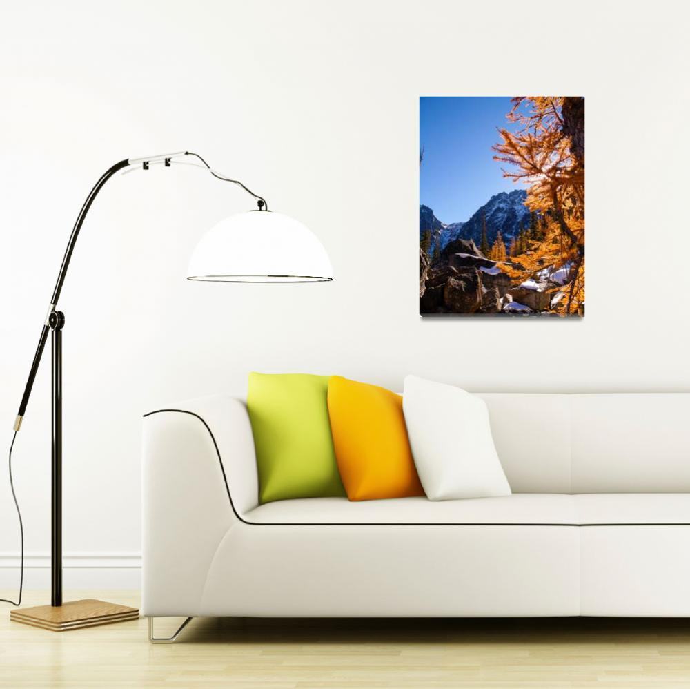 """""""Larch and rock, Enchatments, WA&quot  (2013) by dgolden"""