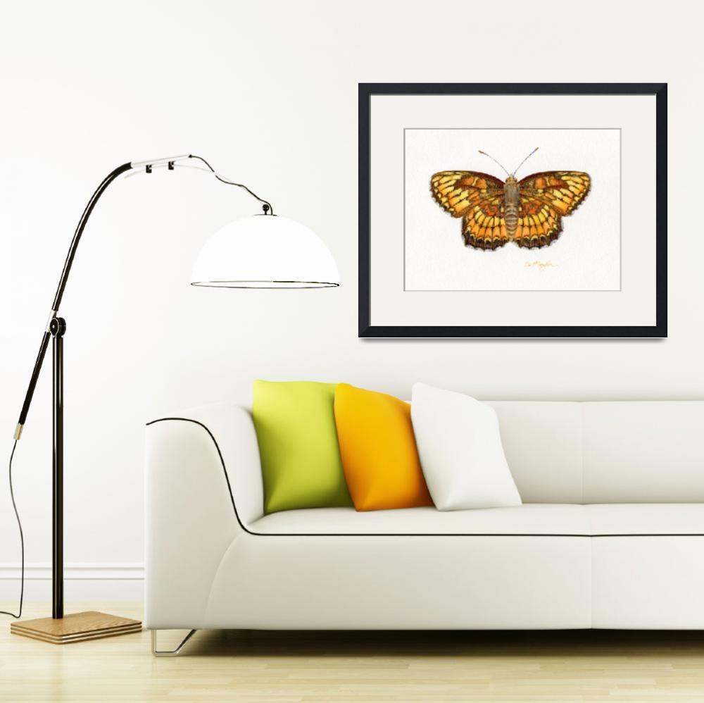 """Theona Checkerspot&quot  (2008) by LisaMclaughlin"