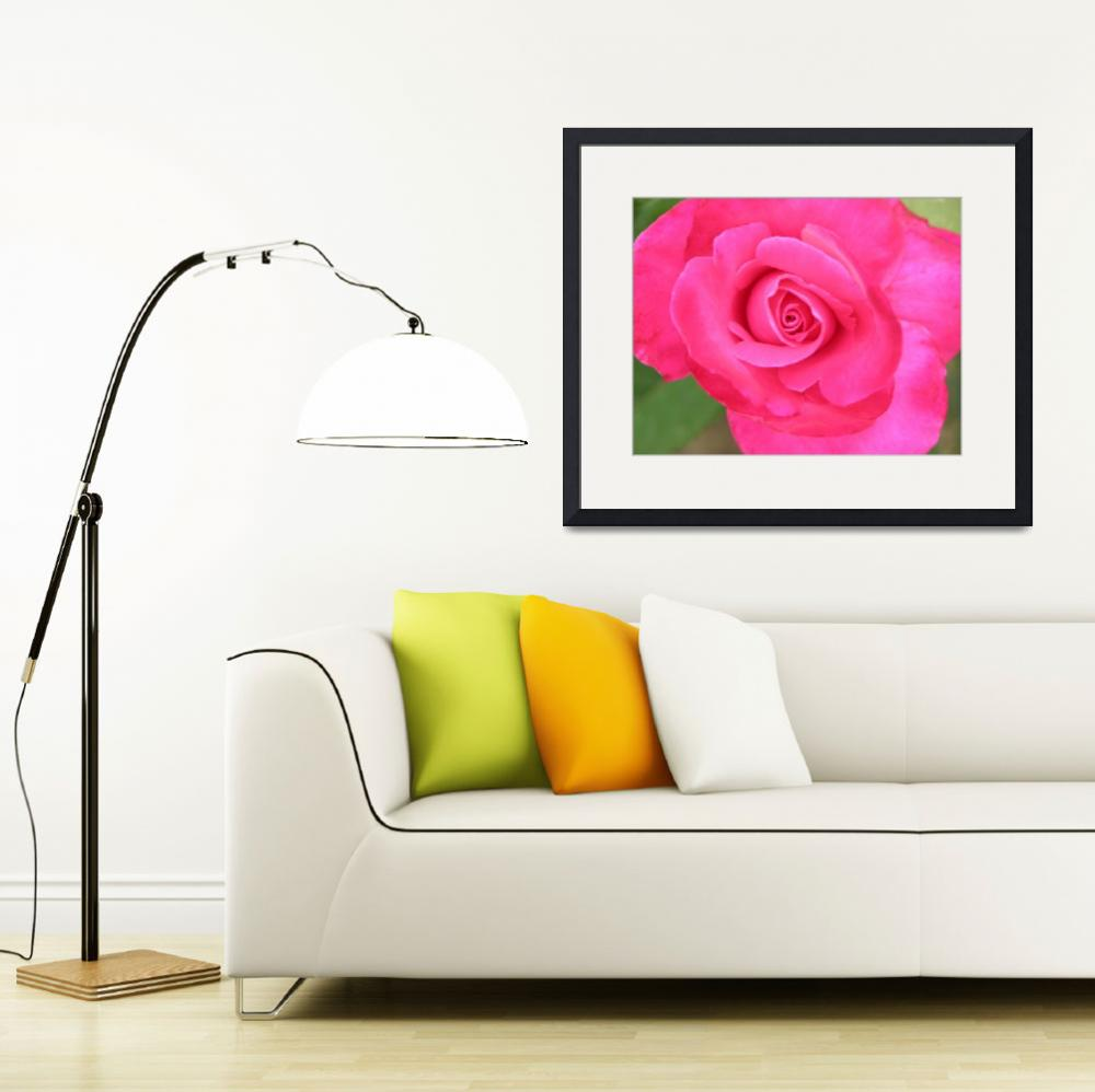 """""""Watercolor Rose&quot  by pgangler"""