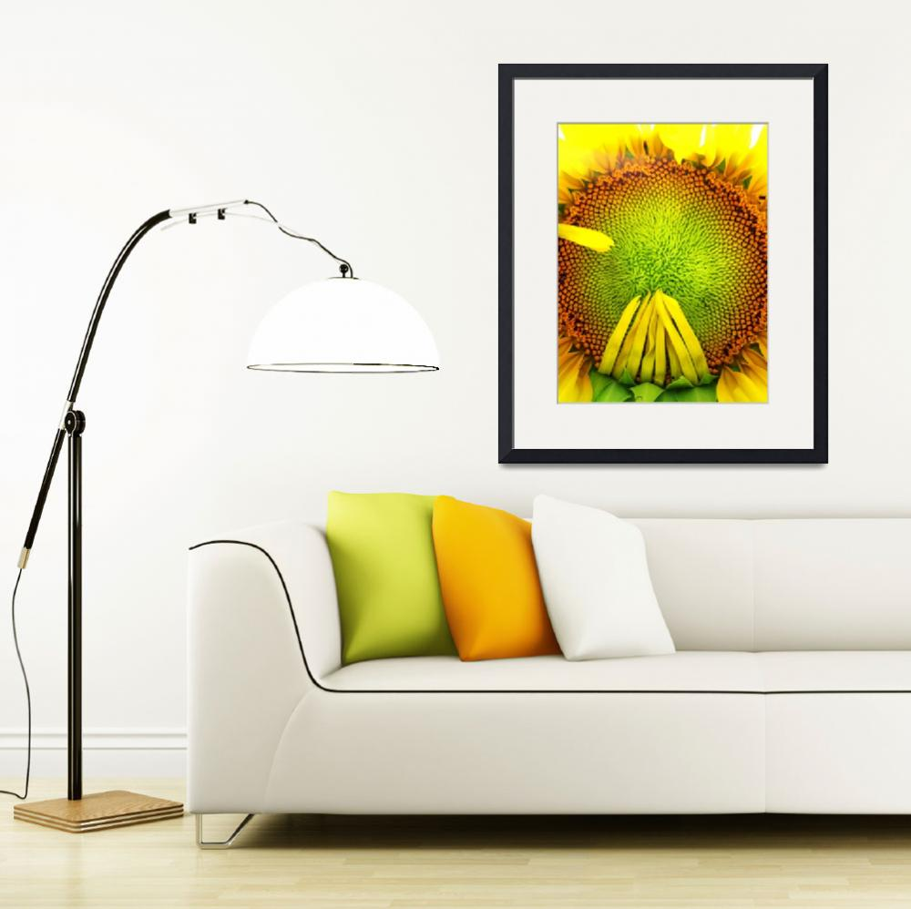 """""""Sunflower Face&quot  (2012) by ksummers"""