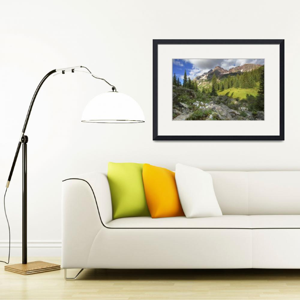 """""""Maroon Bells Images - Columbine and Maroon Bells&quot  by RobGreebonPhotography"""