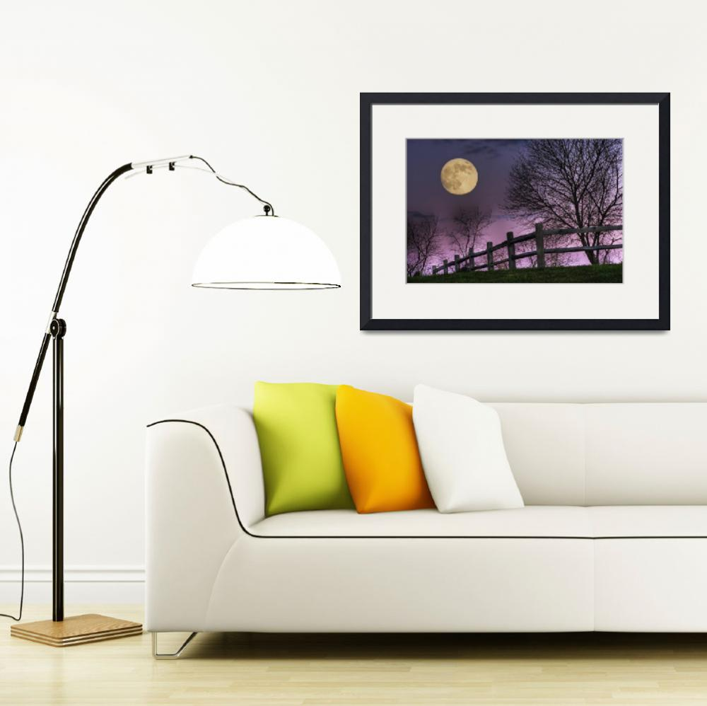 """""""November Moon by Jim Crotty&quot  by jimcrotty"""