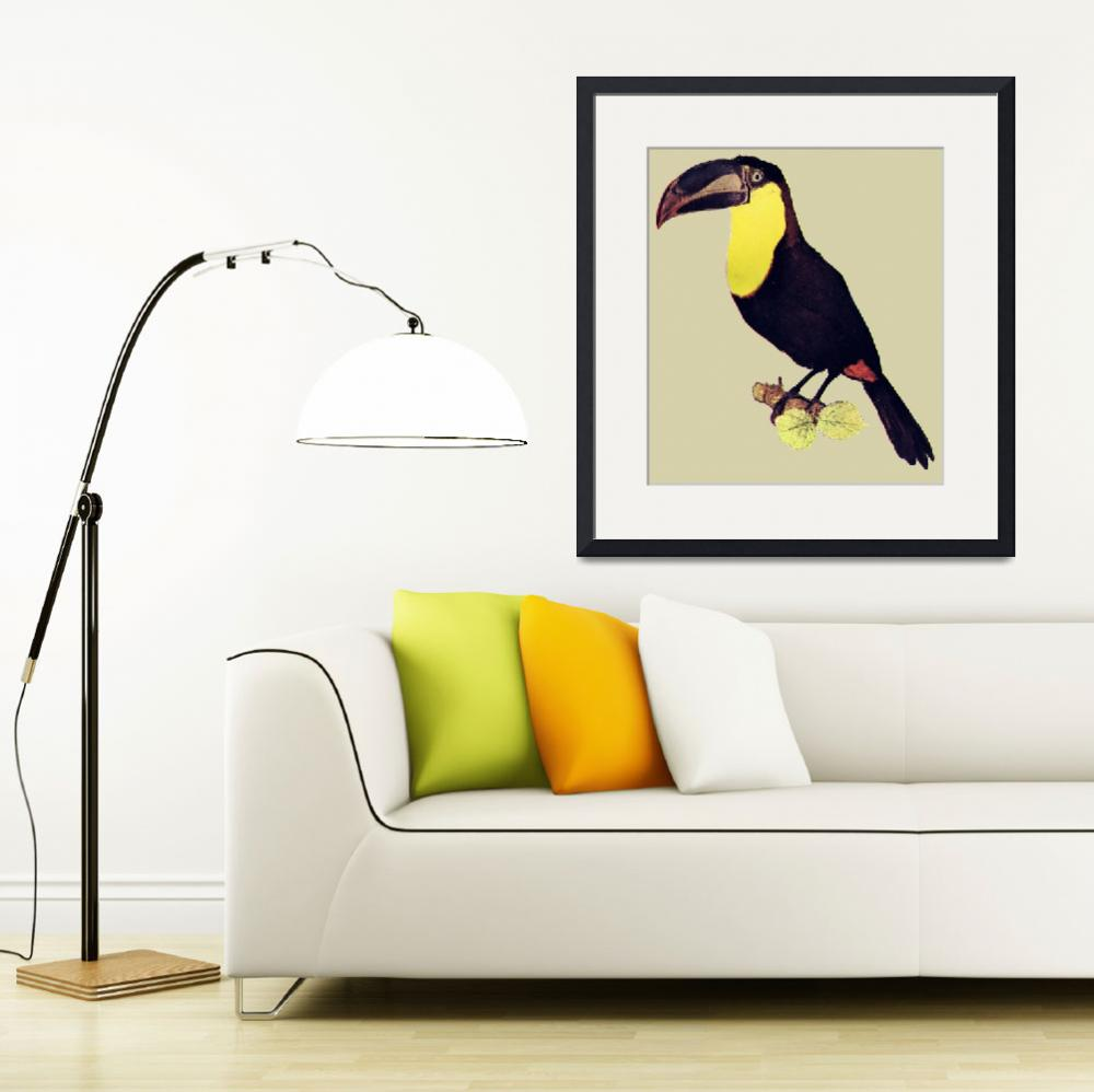 """toucan&quot  (2010) by birthdaygifts"
