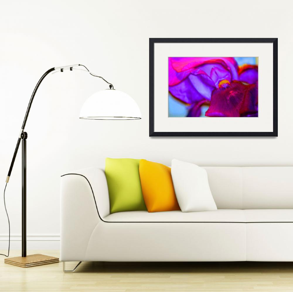 """Abstract Iris&quot  (2012) by KsWorldArt"