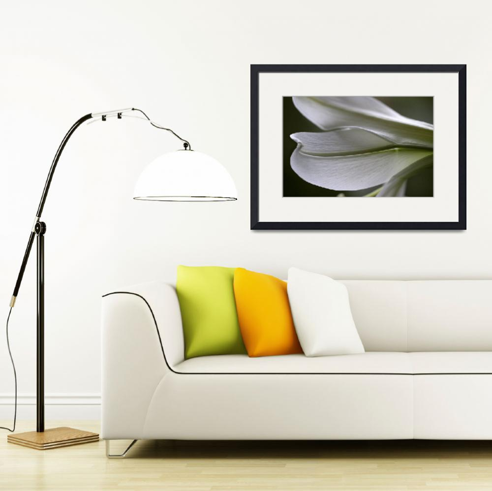 """""""Lily Petal Abstract&quot  (2016) by KsWorldArt"""