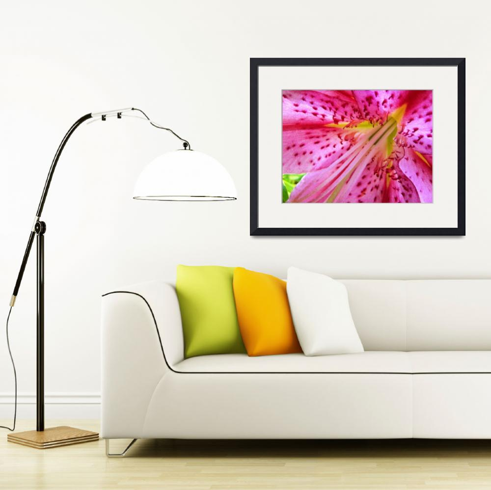"""""""Pink Lily 2&quot  (2008) by MyHartArt"""