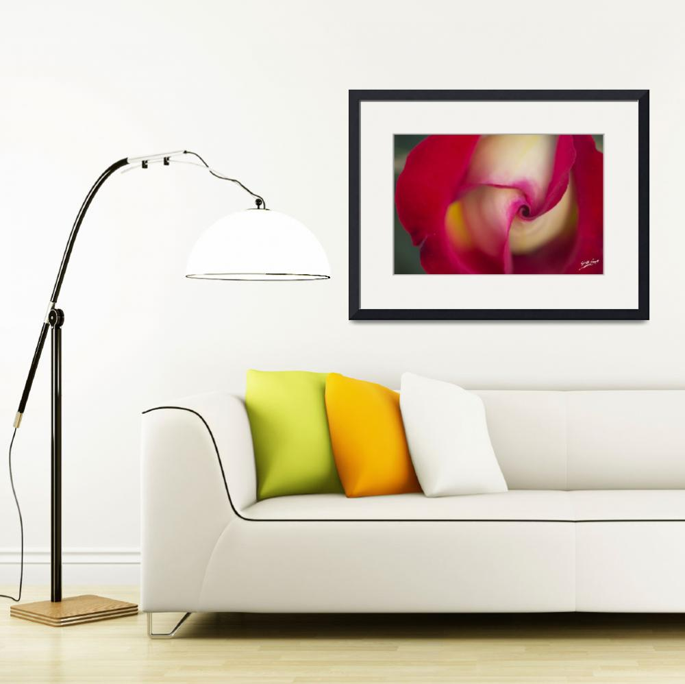 """""""Rose Bud Signed&quot  (2012) by SouthIdahoPhoto"""