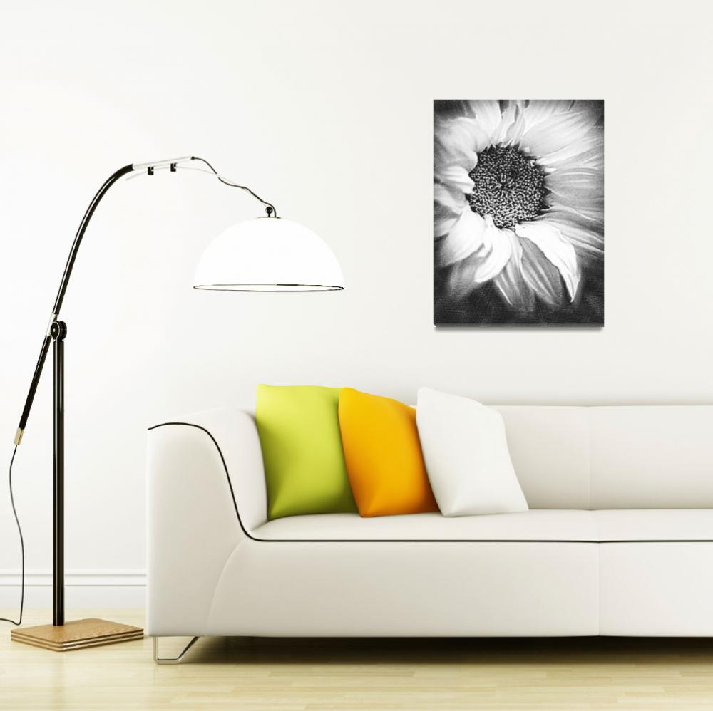 """""""Sunflower White And Black&quot  (2014) by RubinoFineArt"""