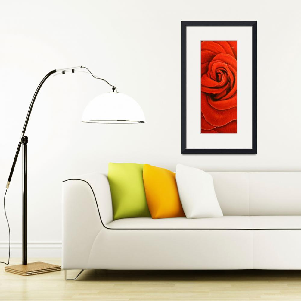 """""""Long Rose&quot  (2012) by IanLeeOliver"""