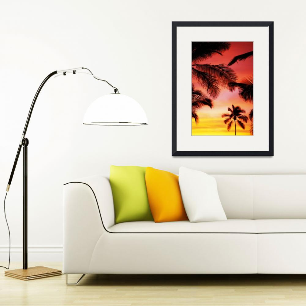 """""""Hawaii, Upward View Of Sky At Sunset, Silhouette P&quot  by DesignPics"""