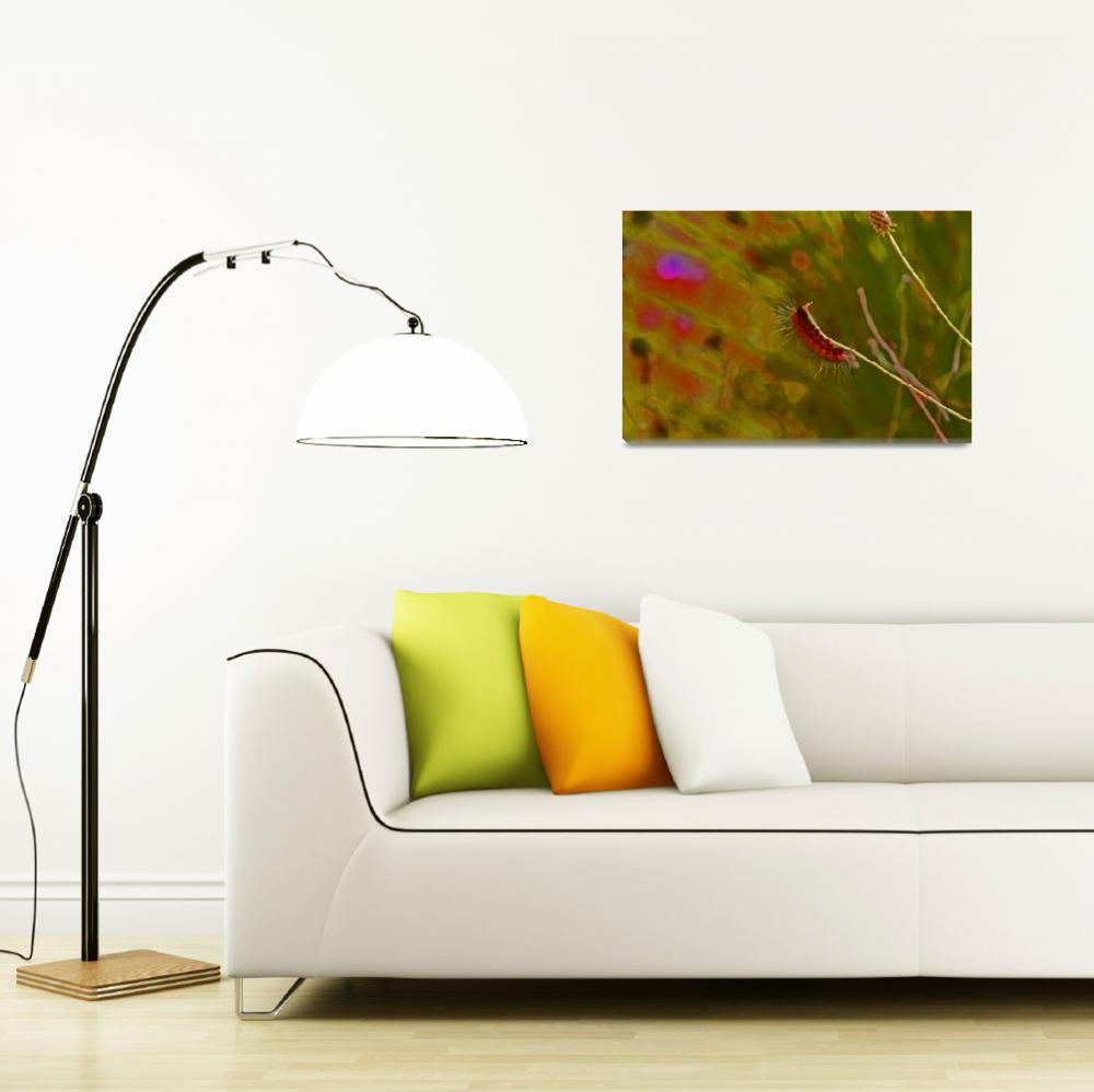 """""""Fuzzy Caterpillar in Bright colors""""  (2011) by KsWorldArt"""