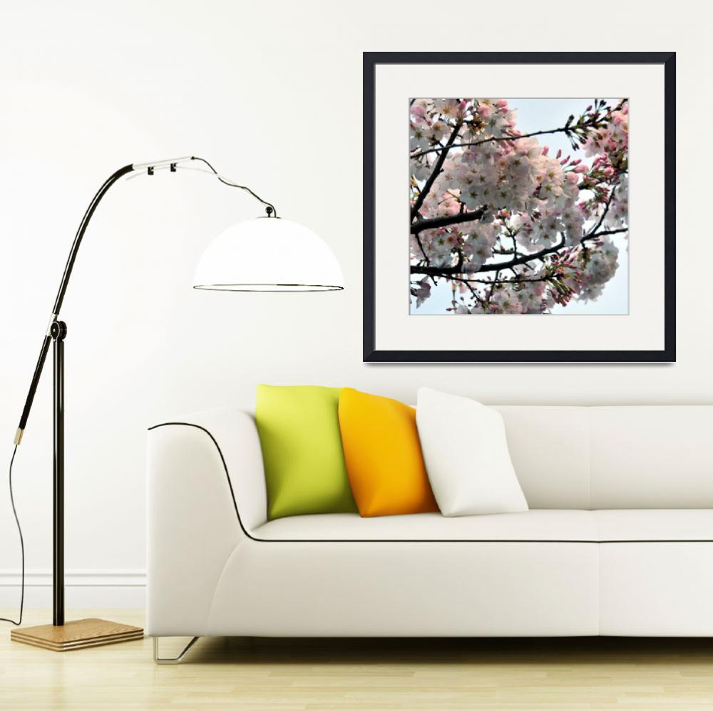 """""""Cherry Tree Expression&quot  (2008) by LorrieMorrison"""
