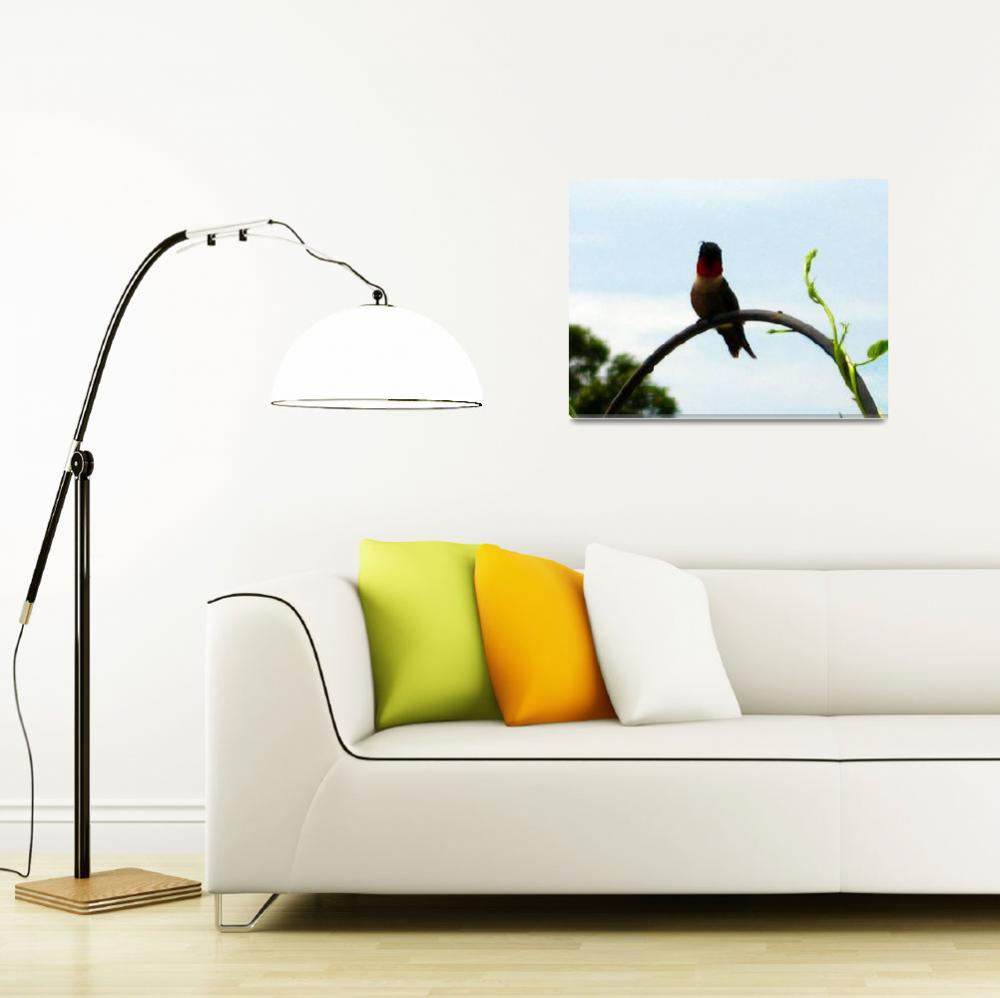 """Ruby Throated Hummingbird""  (2010) by EdmondHogge"