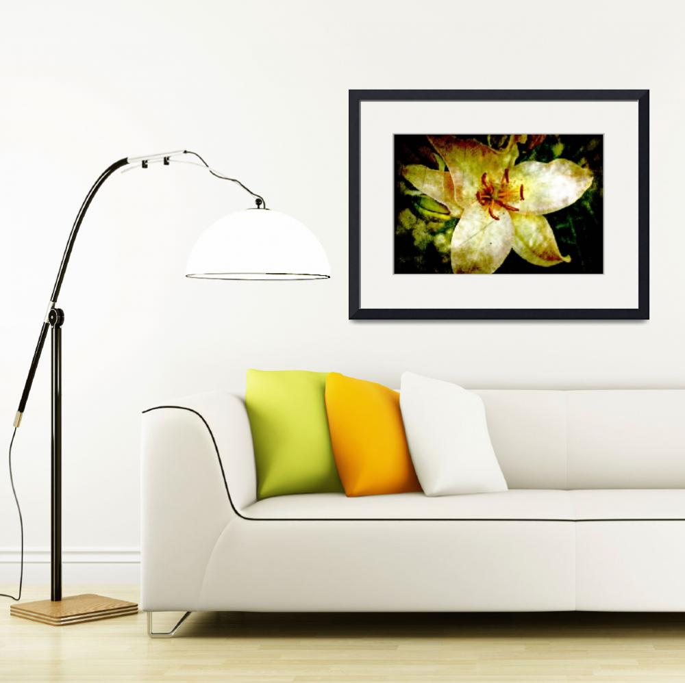 """""""Golden Lily&quot  (2010) by amyhowe"""