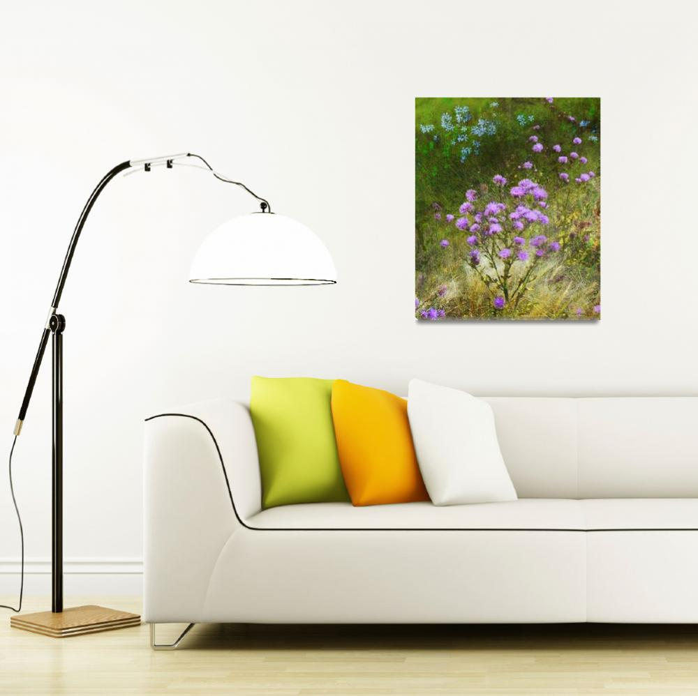 """knapweed and flowered meadow""  (2012) by rchristophervest"
