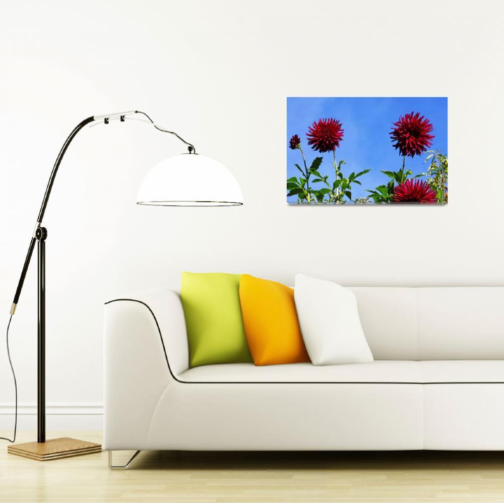 """Blue Sky Dahlia Flower Fine Art Prints Gifts&quot  (2016) by BasleeTroutman"