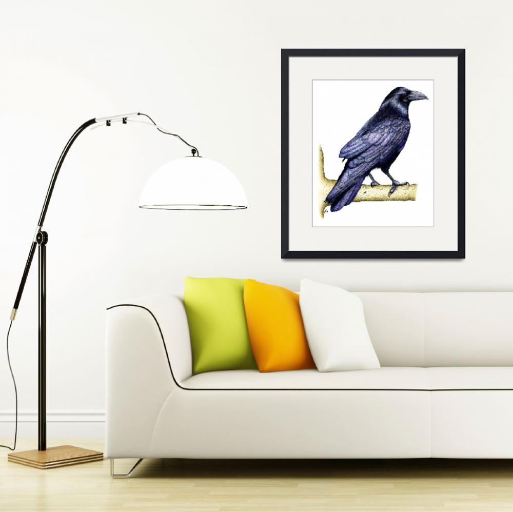 """""""Common Raven&quot  by inkart"""