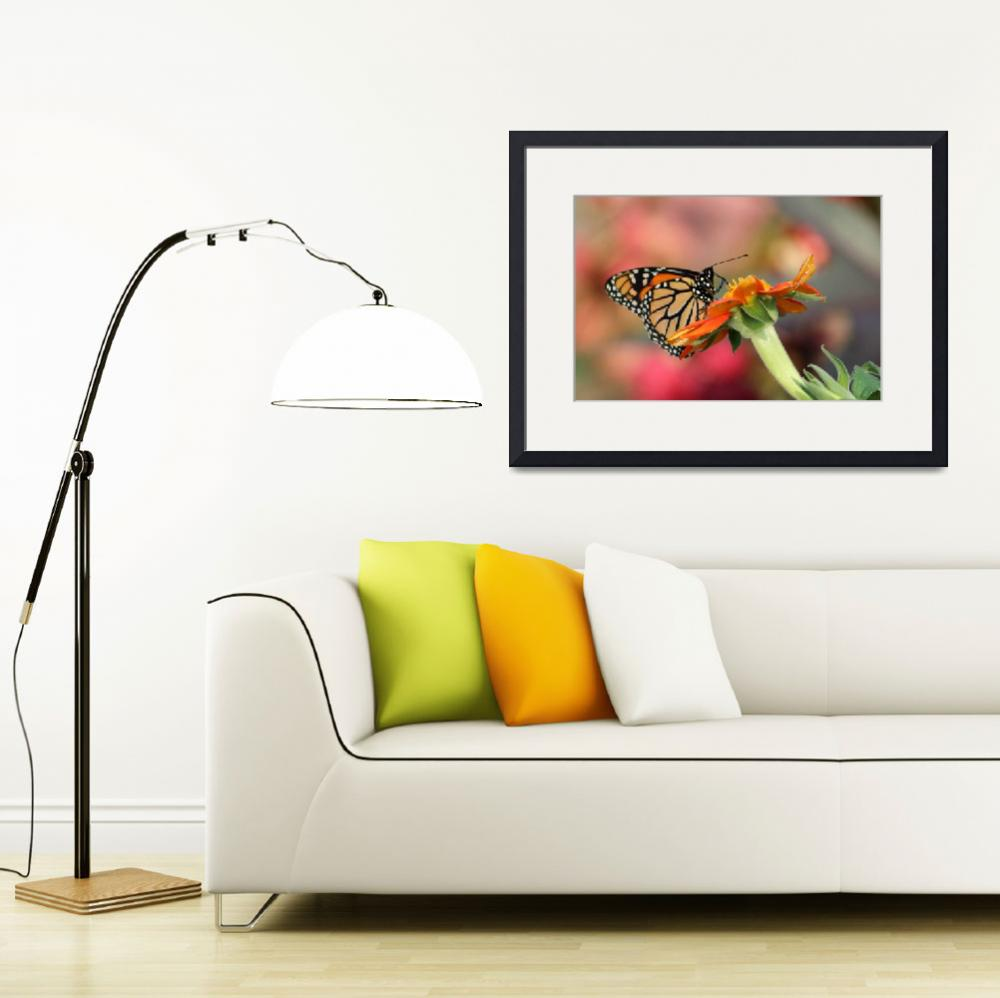 """""""Monarch and Zinnia""""  (2012) by janetharper"""