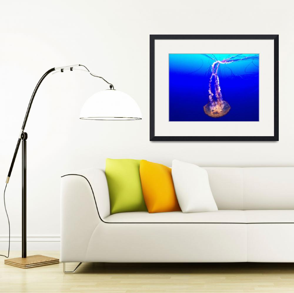 """""""Jellyfish&quot  (2012) by bbriboy"""